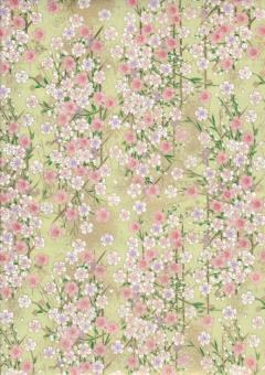 Japanpapier Chiyogami, Kirschblüte auf Zartgrün